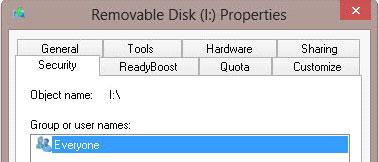 Read only flash drive