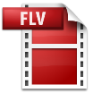 convert FLV to DV