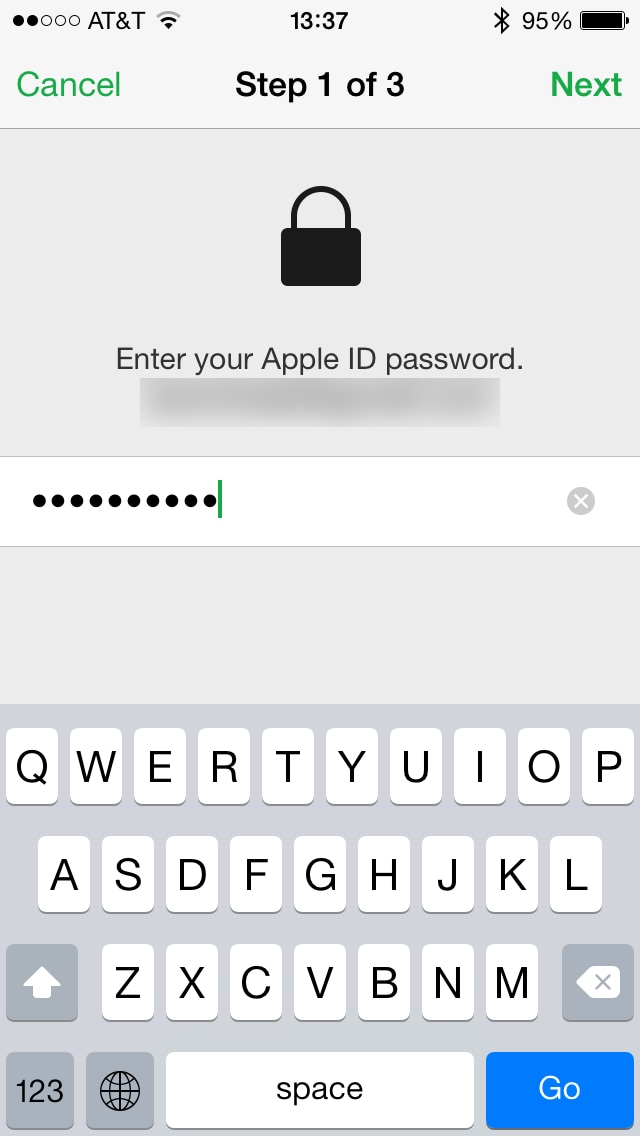enter apple id erase iphone