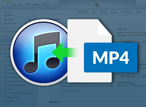 Can't Add MP4/MPEG to iTunes? Solved.