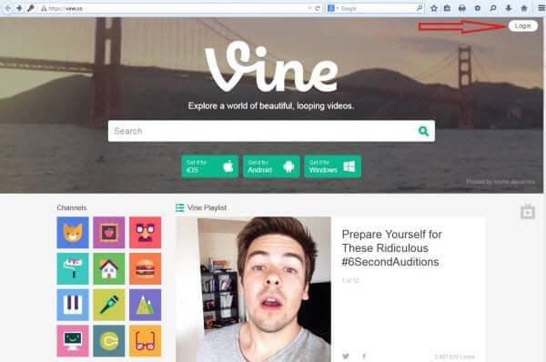 embed vine to website1