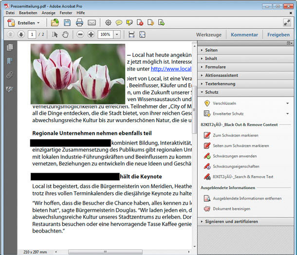 insert image to PDF in adobe acrobat