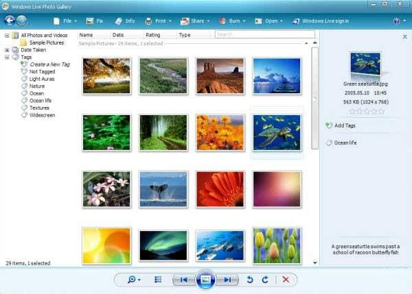 photo organizer software free