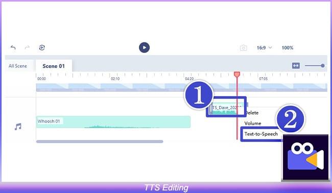 TTS Editing