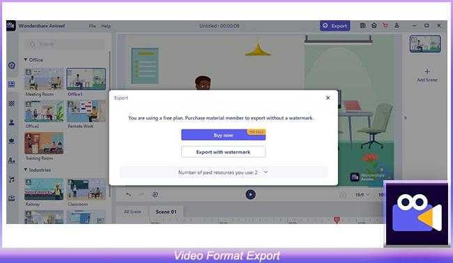 video format export