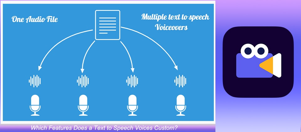 Text to Speech Voice Feature