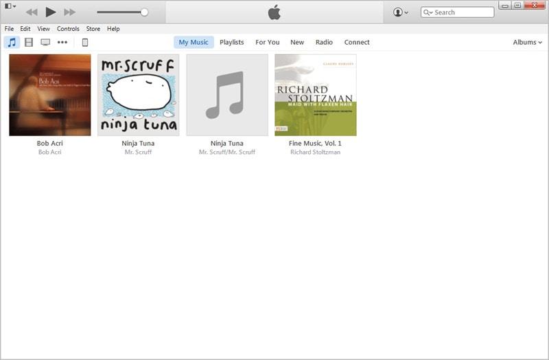 Start iTunes on Computer