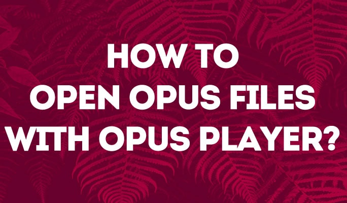 How to Open Opus Files with Opus Player?