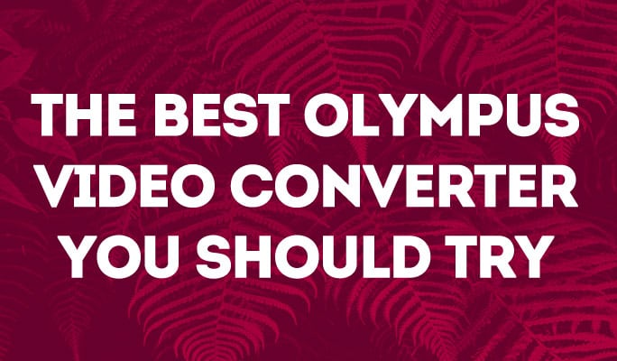The Best Olympus Video Converter You Should Try