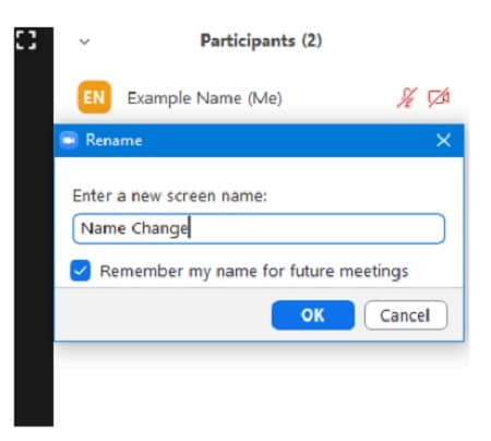 change name in zoom