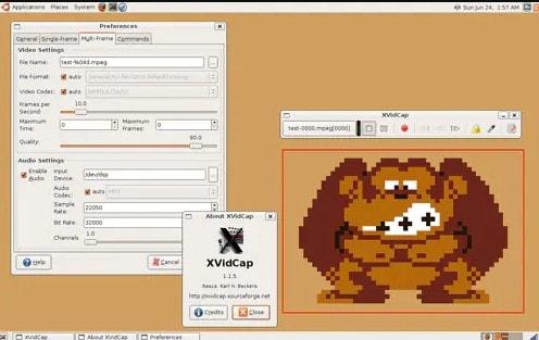 xvidcap open source