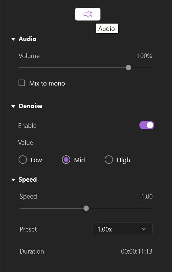 audio adjust
