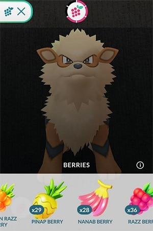pinal berry pokemon go