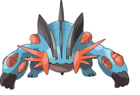 swampert pokemon ability