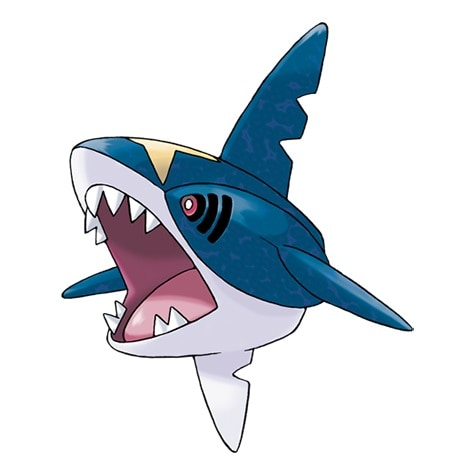 Sharpedo, the second option for a Round 2 attack by Sierra