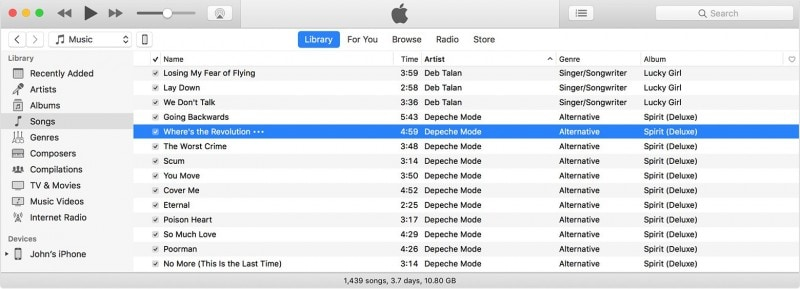 music in itunes library