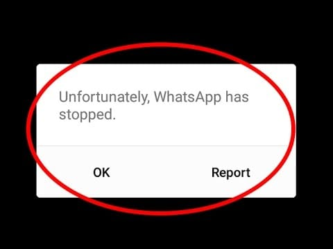 ios12whatsappproblems and solutions-WhatsApp Crashing on iOS 12