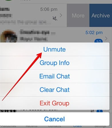 ios12whatsappproblems and solutions-Un-mute group notifications
