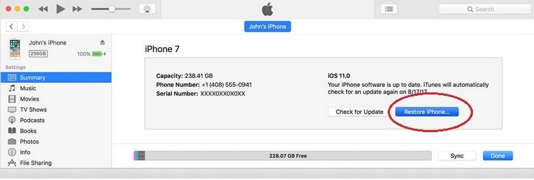 Choose Restore iPhone