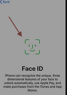 Figure 8 set face ID