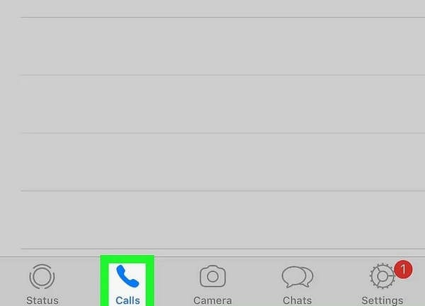 tap on calls from whatsapp
