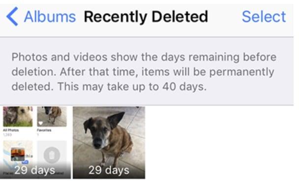 recover photos and videos