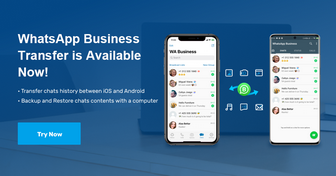 whatsapp business transfer