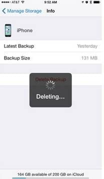 Need to delete iCloud Backup