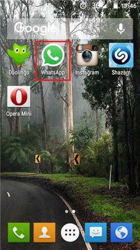 Open WhatsApp