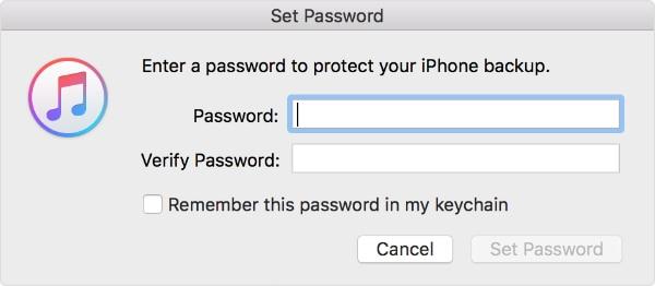 start to encrypt iTunes backup