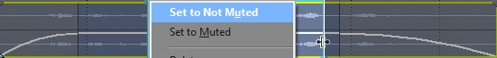 Mute audio to selected part