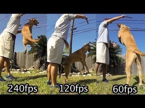 Basic Camera Settings Frame Rate