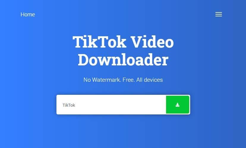 snaptik video downloader