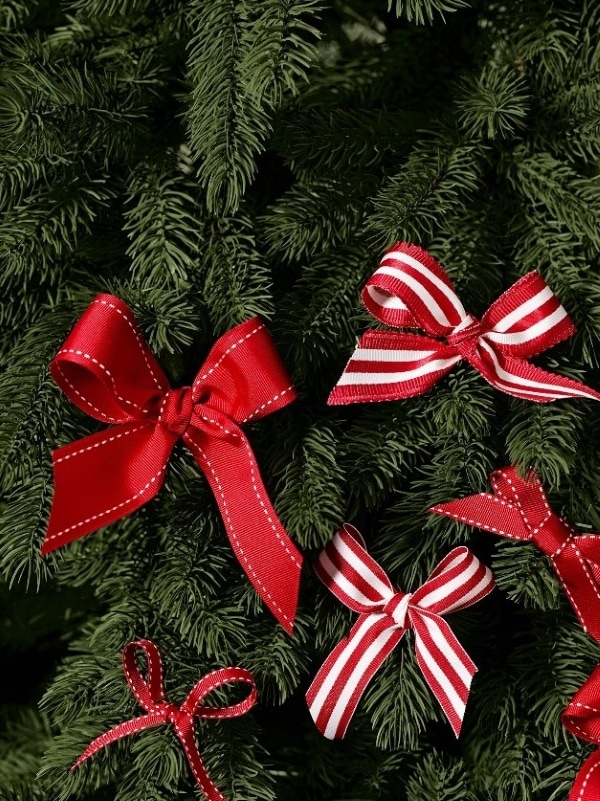 decorative branch and ribbons