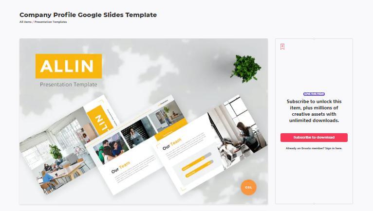 company profile google