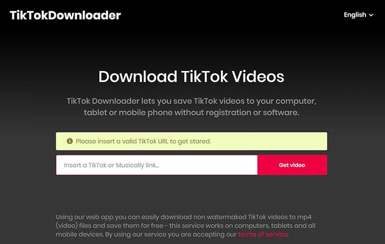 ttdownloader tiktok video