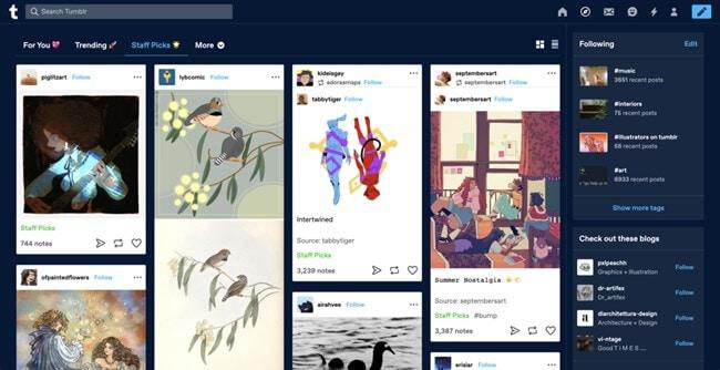 tumblr-dashboard