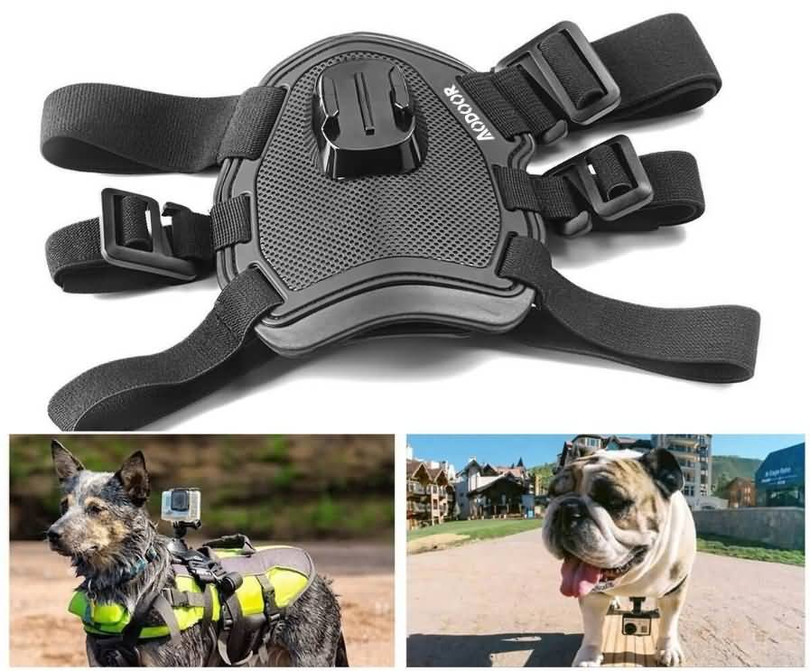 Aodoor Chest and Back Mount Pet Harness