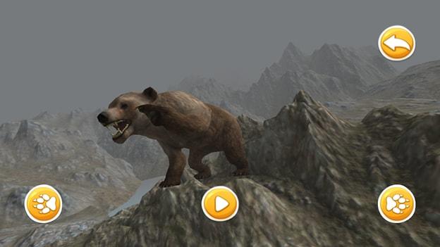 bear-sim