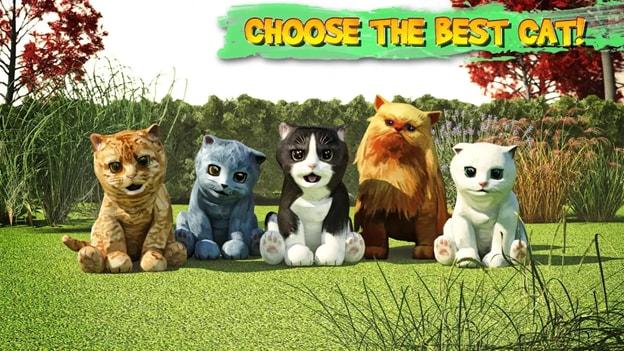 cat-sim