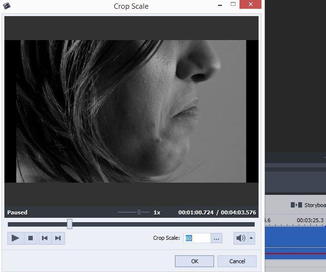 crop-videos-in-avs