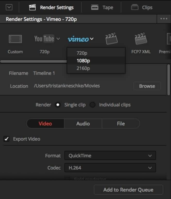 davinci-resolve-deliver-page