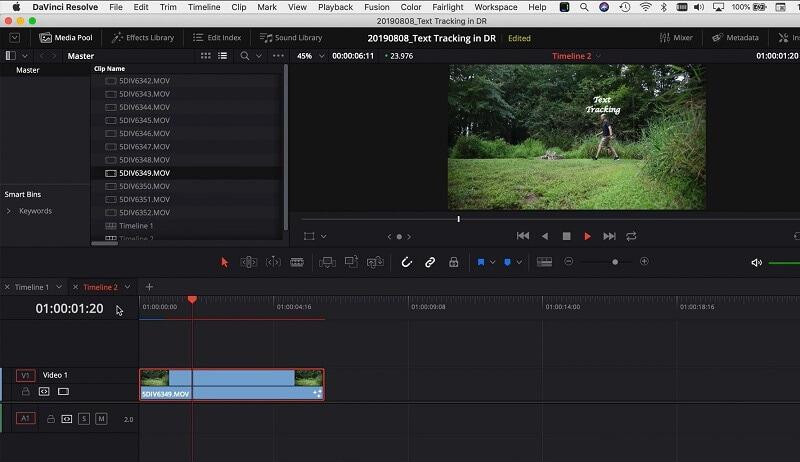 Davinci Resolve Video Preview