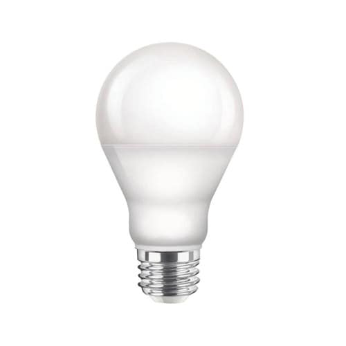 Daytime Light Bulbs
