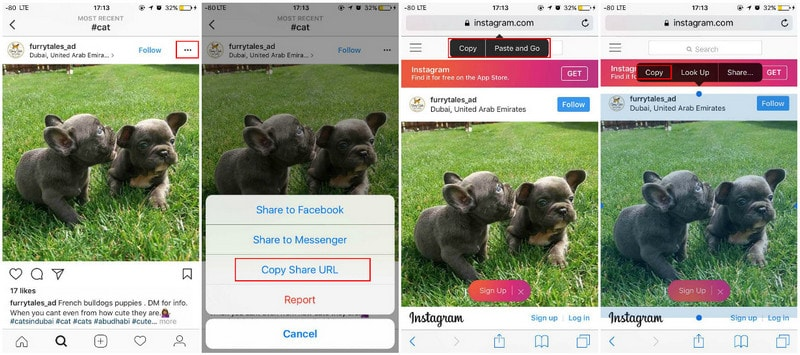 How to Download/Save Instagram Photos/Videos on iPhone