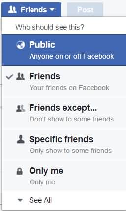 facebook public settings