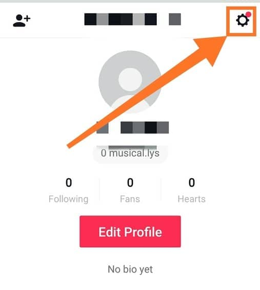 How to Delete a TikTok Account Permanently?