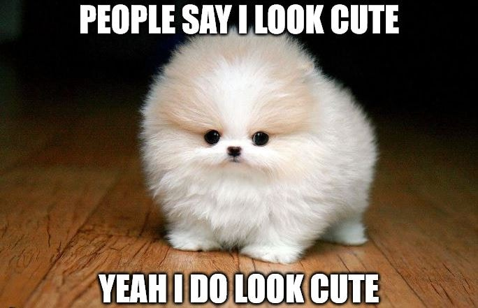 People Say I Look Cute