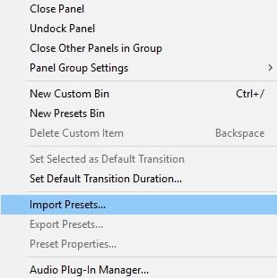 import preset premiere