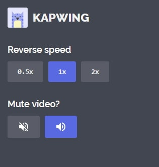 Kapwing reverse video interface